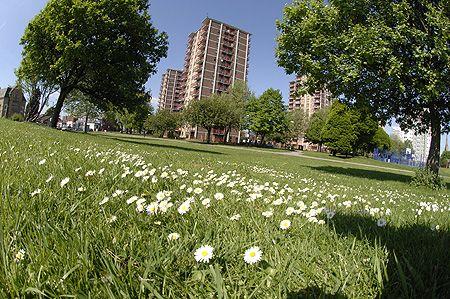 Hamer Park, Old Trafford