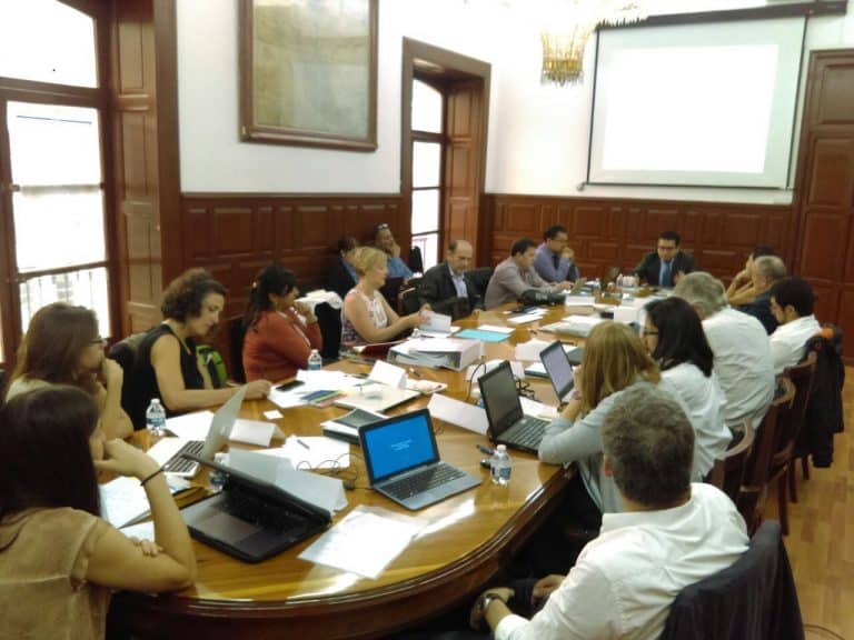 City of Puebla, business consultation