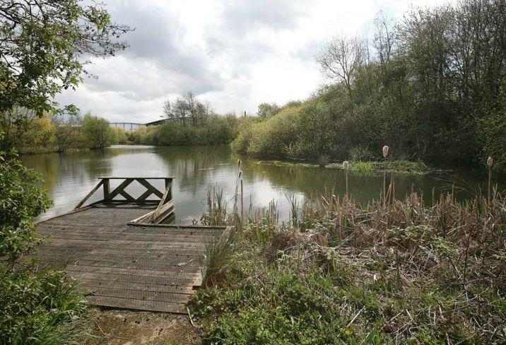 Trafford Park Ecology Park